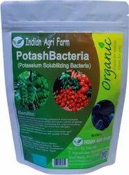 Potash Bacteria , Potassium Mobilizing Bacteria Powder