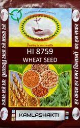 Natural Wheat Hi 8759 (Pusa Tejas) Seed 40Kg Packing (Grown In MP), Packaging Type: PP Bag, 12
