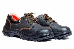 Darit Safety Shoes