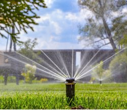 Pop Up Sprinklers