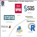 PHD Thesis Statistical Data Analysis Services
