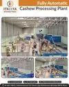 Cashew Processing Equipment