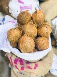 100 Dana Pooja Coconut