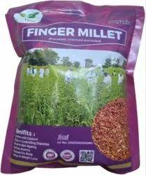Organic Finger Millet (Ragi)