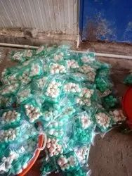 Pan India BUTTON MUSHROOMS, Packaging Type: Packet, Packaging Size: 1 KG