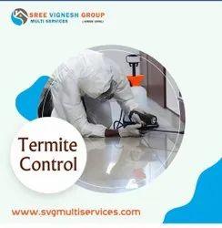 1 Day Termite Pest Control Service, in India
