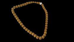 Fedolight Necklace