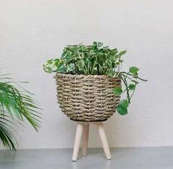 Designer Wooden Office Table Vases