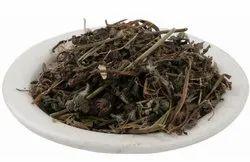 A D Food & Herbs Organic Bhringraj / Eclipta Alba / False Daisy