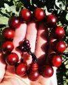 Red Sandalwood Bracelets