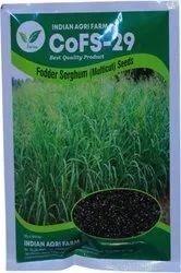 CoFS29 Fodder Sorghum/Jowar Seeds (Multicut/Perennial)