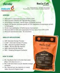 Bio Culture (Bacteria) Powder For ETP STP