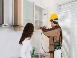 Indoor Pest Control Services, in Local