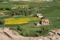 Farm House  Land Conversion