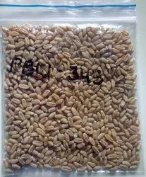 Natural Wheat Seeds - PBW 343, For Agriculture, Packaging Type: Bag
