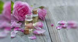 Rose Agra