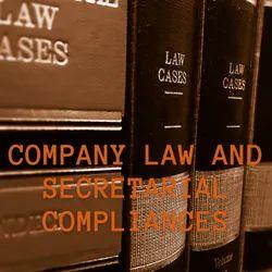 Company Law Compliance Service