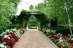 Garden Plant Services