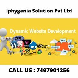 PHP/JavaScrip,HTML5/CSS Dynamic Web Designing Services, With 24*7 Support