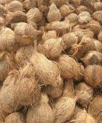 B Grade Solid Semi Husked Coconut, Packaging Size: 50 Kg, Coconut Size: Medium