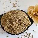 Canary Bird Seed
