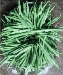 Green Bush Beans, A Grade, Packaging Size: 5 Kg