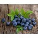 Blueberry Emulsion