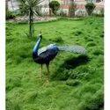 Pleasant Statue Of Peacock