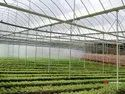 Agriculture Greenhouse GI Pipes
