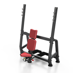 Shoulder Weight Lifting Bench