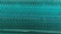 Green Bird Net