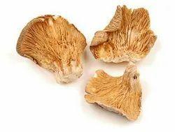Dry Mushroom, Packaging Type: Carton, Packaging Size: 10 Kg