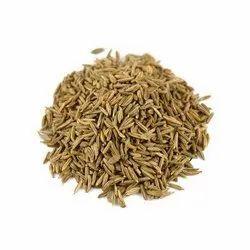 Green Caraway Seeds