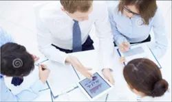 Business And Corporate Project Consultation Service