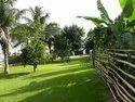 Natural Landscaping Gardening