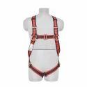 Class L Full Body Harness