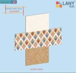 250x400mm Ceramic Digital Wall Tiles