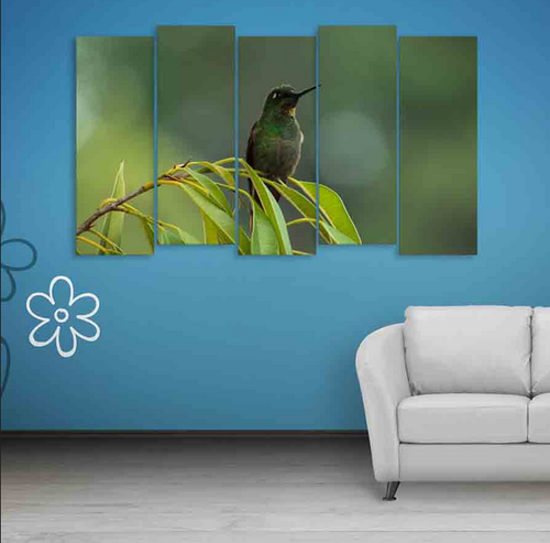 Inephos Multiple Frames Beautiful Bird Wall Painting