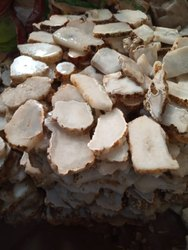 Agate Stone Slices & Rough Stone
