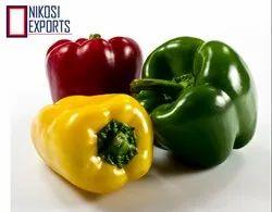 Fresh Colours Capcicum, Packaging Size: 10 kg
