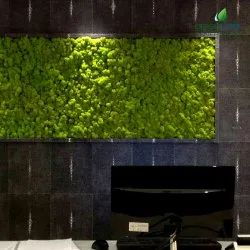 Artificial Grass Wall