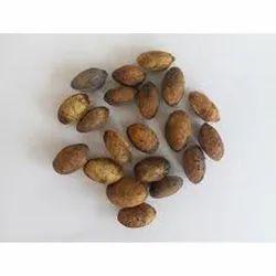 Simarouba Glauca Seed