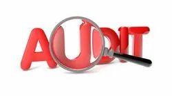 Risk Audit