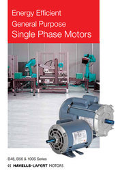 Havells Single And Three Phase Motors