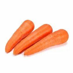 Carrot English Wholesaler In Ahmedabad