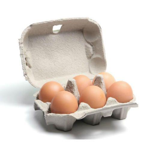 Waste Paper Egg Tray at Rs 350/pack | Partap Garh | Kurukshetra| ID:  14931785162
