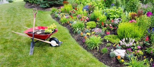 Exceptional Garden Maintenance Service