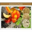 Premium Quality Sesbania Gum Powder