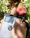 Produce Quality Meter
