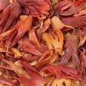 Mace Spice Seeds